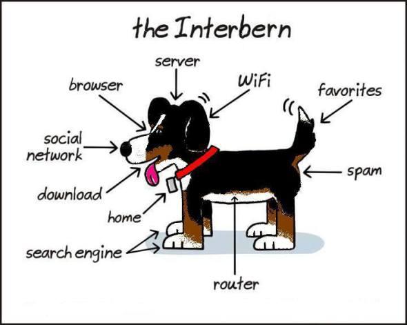the berner internet