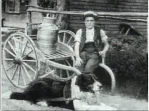 berner-cart 2